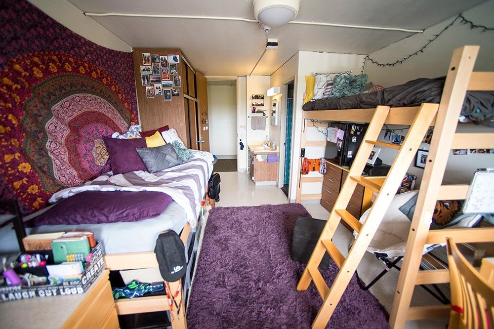 Loft Bunk Beds University Housing Dining Services Oregon