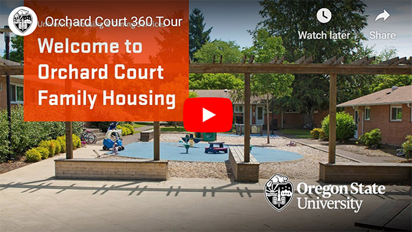 orchard court 360 video