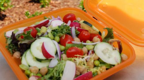 salad in an Eco2Go container